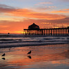 2021-01-12_HB Pier Sunset_17.JPG <br /> King Tides brought a negative low tide in the afternoon for spectacular reflections!