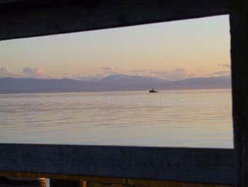 Tug and Vancouver Island