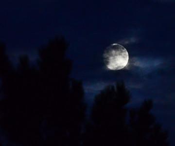 Super Moon 11-16