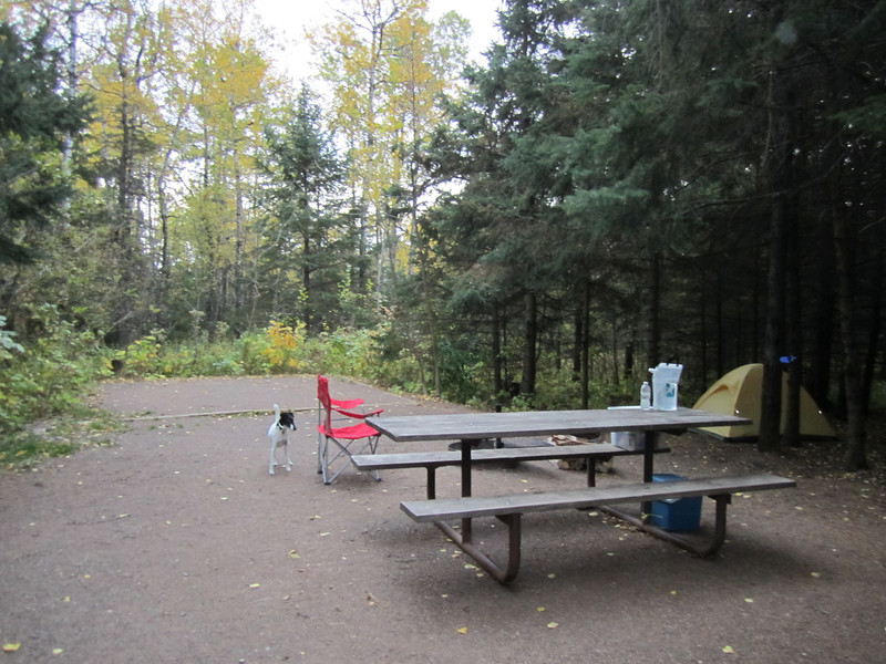 Setting up camp at one of my favorite Jay Cooke campsites.....site 81, a walk-in site away from everyone else! Just waiting for the other girls to show up for the night time tent set up....went smoothly if I may say so myself!