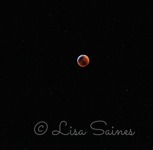Blood moon phase full eclipse