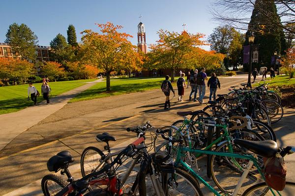 Bikes-Bicycles