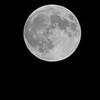 Supper Moon
