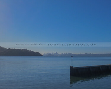 TomMillsPhotos-D2015-0802