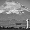 Fuji 2