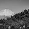 Fuji 14