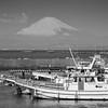 Fuji 13