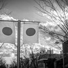 Japanese Flag 1