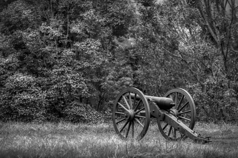 VA Cannon 4