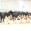 Supreme16_Holstein_L32A1547