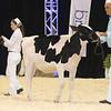 Supreme16_Holstein_L32A0819