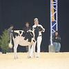 Supreme16_Holstein_L32A0822