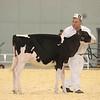 Supreme16_Holstein_L32A0818