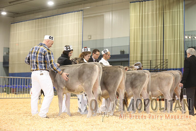 Supreme Brown Swiss Show 2015