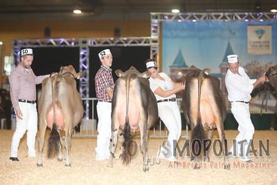 Supreme Jersey Cows 2015