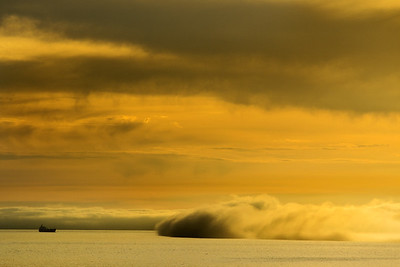 Rolling fog Beach Gallery