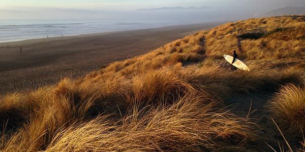 Dune Grass Pano