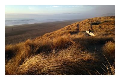 Dune Grass Look