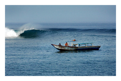 Tele Paddle Indonesia