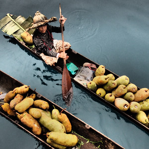 Indo Fruit Delivery