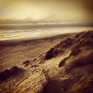 SF Dune.
