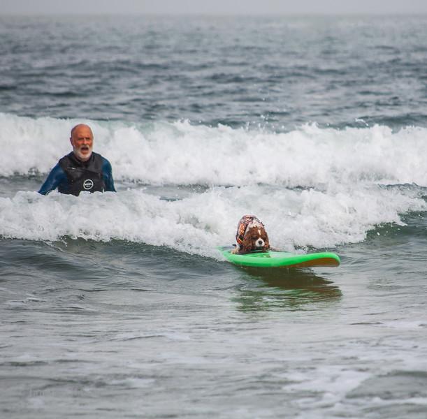 2019 Surfdog World Champioships