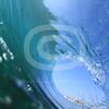 May062010_0208
