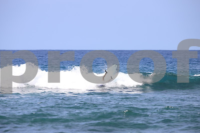 Surf Photos 2018 (Oct-Dec)