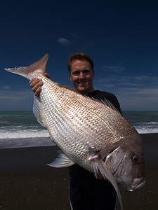 Image of 9 kilogram plus New Zealand snapper at Whakaki Beach, Hawke's Bay