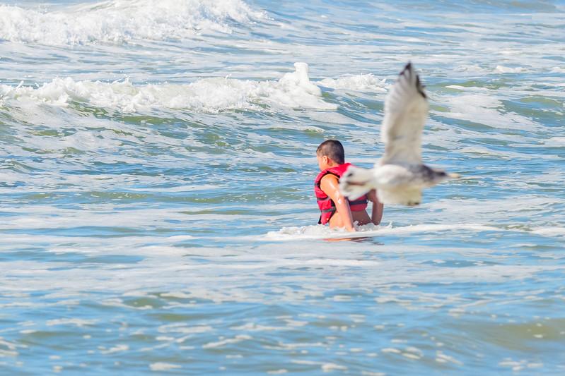 Surfer's Healing Lido 2017-1011