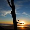 Gisborne Sunrise