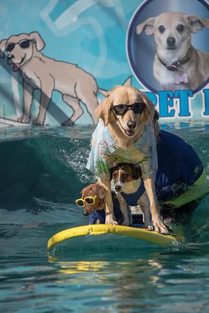 Surfin Trio