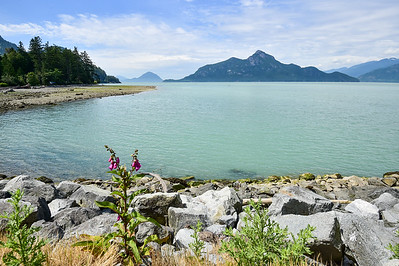 2018 Alaska-15