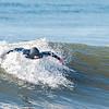 Surfing Lido 4-25-20-623