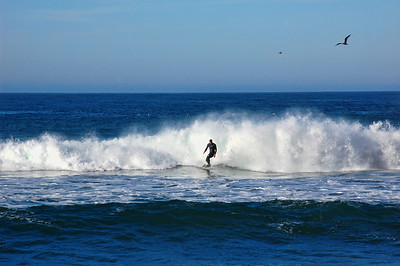 california-surfing