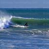 2021-01-17_Morro Strand_Coronado_F_4135.JPG