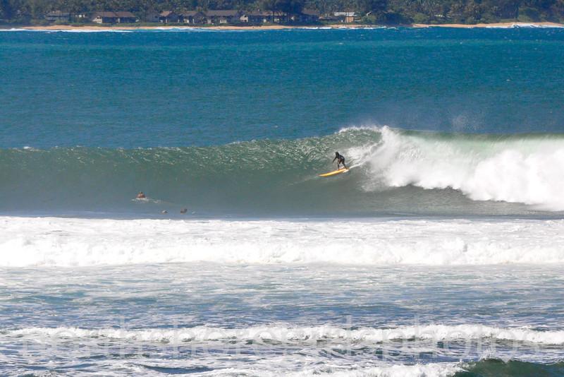 Kalani + 8 Waves