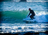 Surfing  (3 of 356)