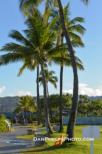 2015 Hawaii-42
