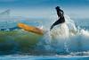 Surfin'-27