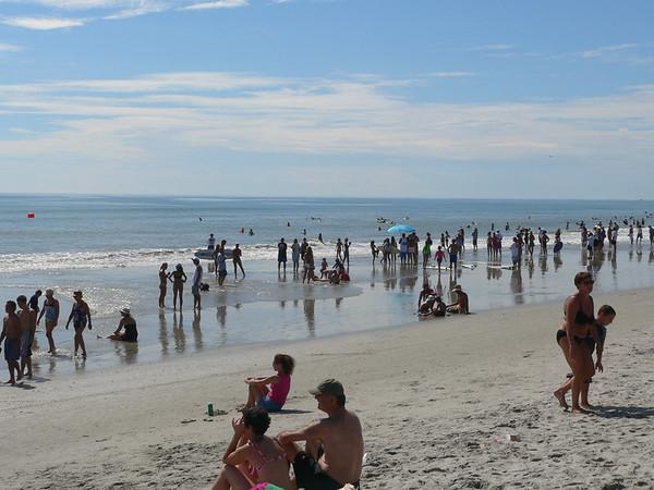 NKF Surf Contest 2006