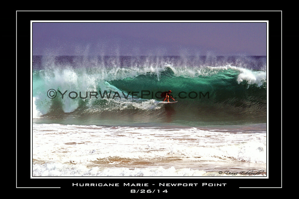 Point Pirdy Poster 18x12.jpg