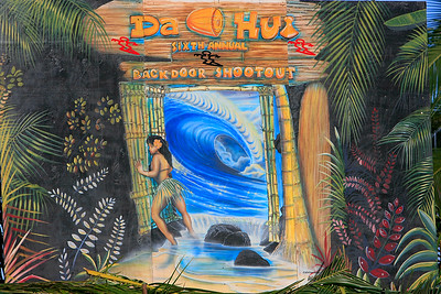 Hawaii Photography book is available at  http://www.blurb.com/user/store/cusworth