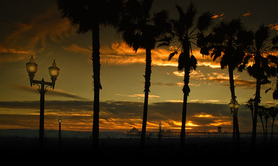 hb sunset with palms