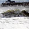 2016-01-07_Seal Beach SS_Fox_1606.JPG