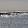 "2018-12-18_Seal Beach SS_Cloudbreak_11.JPG<br /> <br /> A big WNW swell hit North Orange County Tuesday, bringing rare waves to ""Cloudbreak"", south of the Seal Beach Pier."