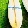 110604-Surfboards-010