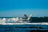 Surfin-8