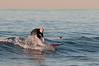 100906-Surfing-001