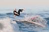 100906-Surfing-061